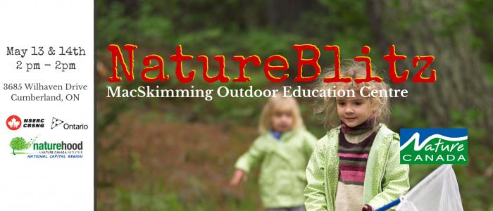 Featured Image for MacSkimming NatureBlitz