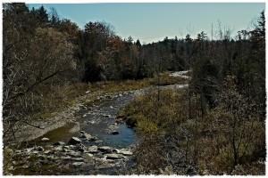 Little Rouge Creek in Rouge Park
