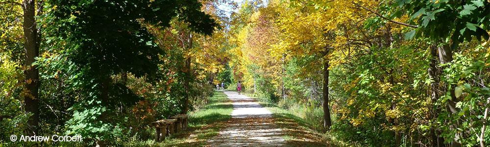 Image of Georgian Trail