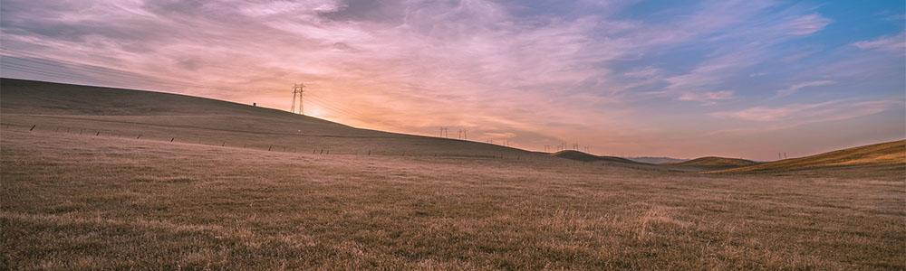 Image of grasslands