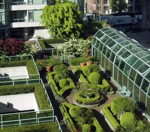 Image of a Green Roof
