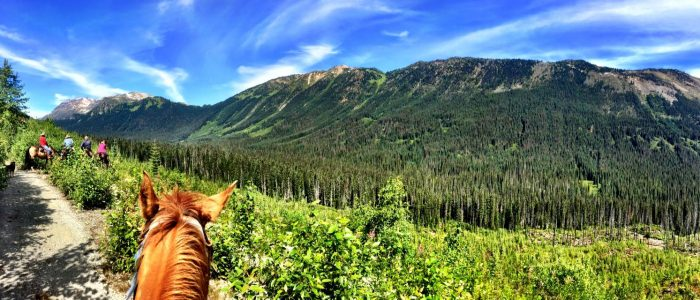 Image of a horse and mountains