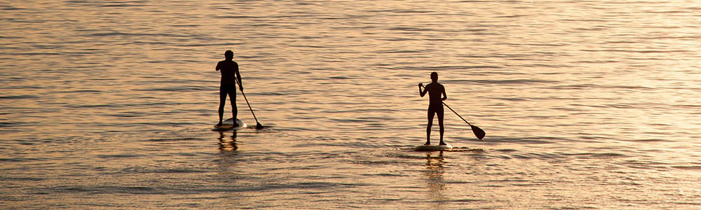 Image of people stand up paddleboarding