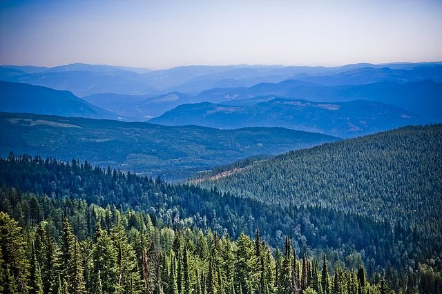 Image of mountains and forests