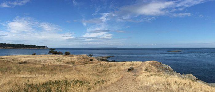 Image of British Columbia Coastline