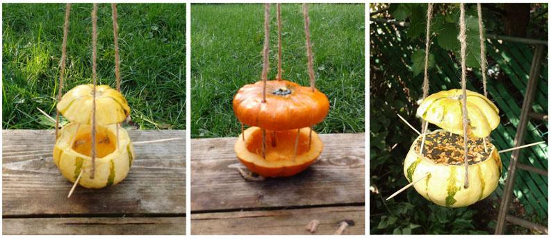 Image of a DIY Gourd Bird Feeder