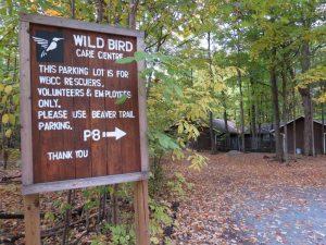 Wild Bird Care Centre