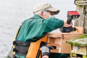 Image by J.Saremba of Kiyoshi installing a new bird box