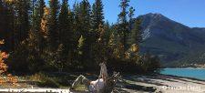 Adventure Made Easy:CanoeingDay Trip to Barrier Lake/Spray Lake
