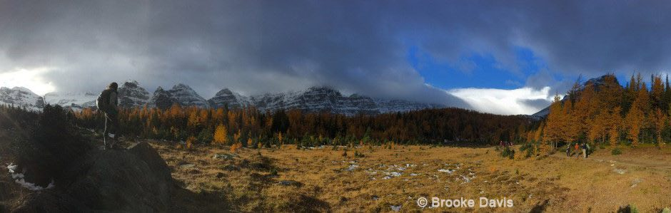 Image of Larch Valley