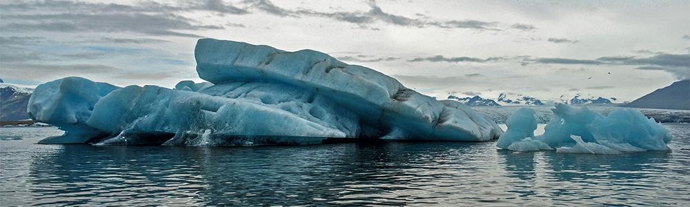 Good news for Arctic marine ecosystems