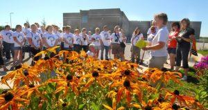 Image of Monarch Butterflies workshop