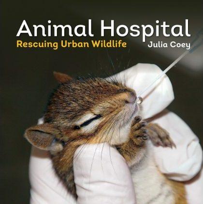Image of Animal Hospital book