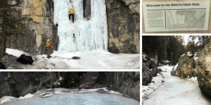collection of images of Grotto Creek by Booke Davis