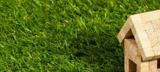 Spring Tips to Green Your Home