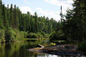 image of Algonquin Provincial Park