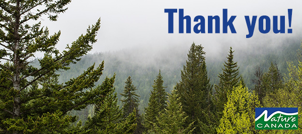 volunteer_thank-you-card
