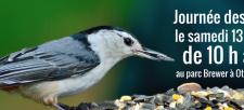 Édition 2017 de la Journée des oiseaux à Ottawa