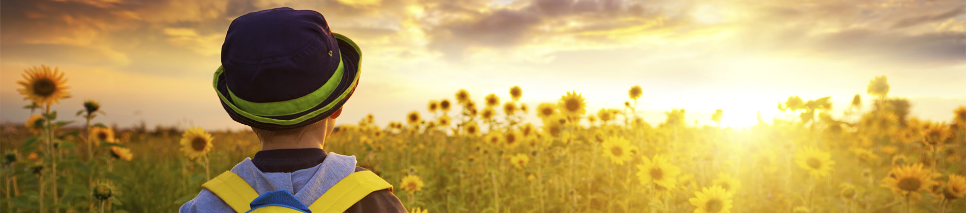 Image of a boy in a field