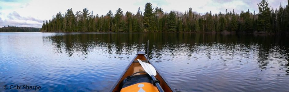 Image of a canoe trip