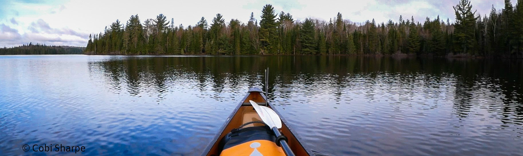 Why I went out alone in Algonquin Park