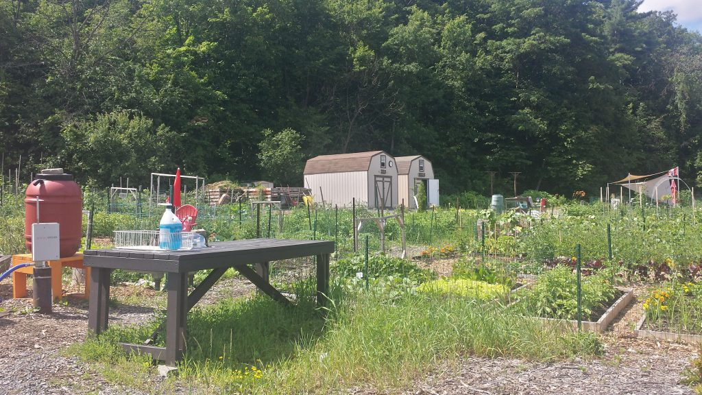 Image of Orleans Community Gardens