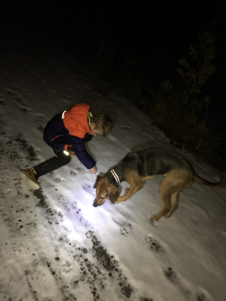 Image of Jill's son and dog in snow