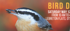Join Us for Bird Day 2018!