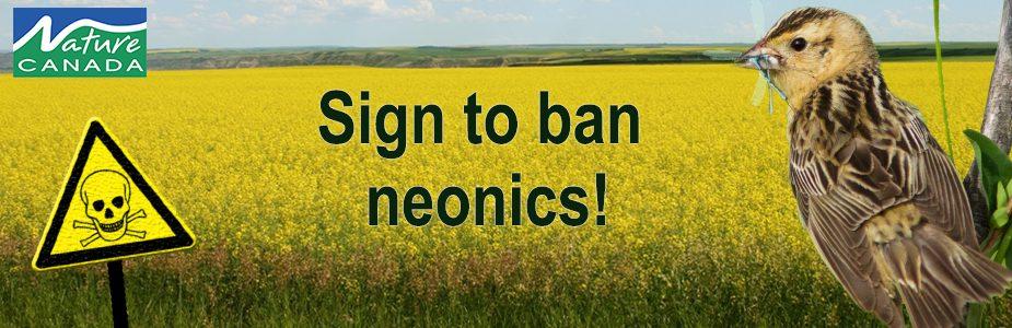 Image of neonics petition header