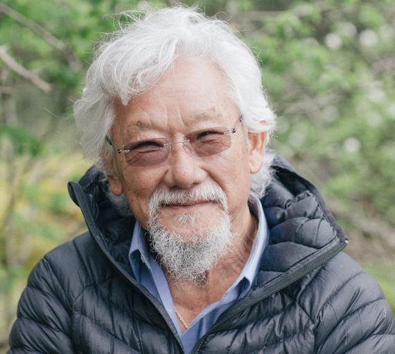 David Suzuki Food Connection - Essay Example