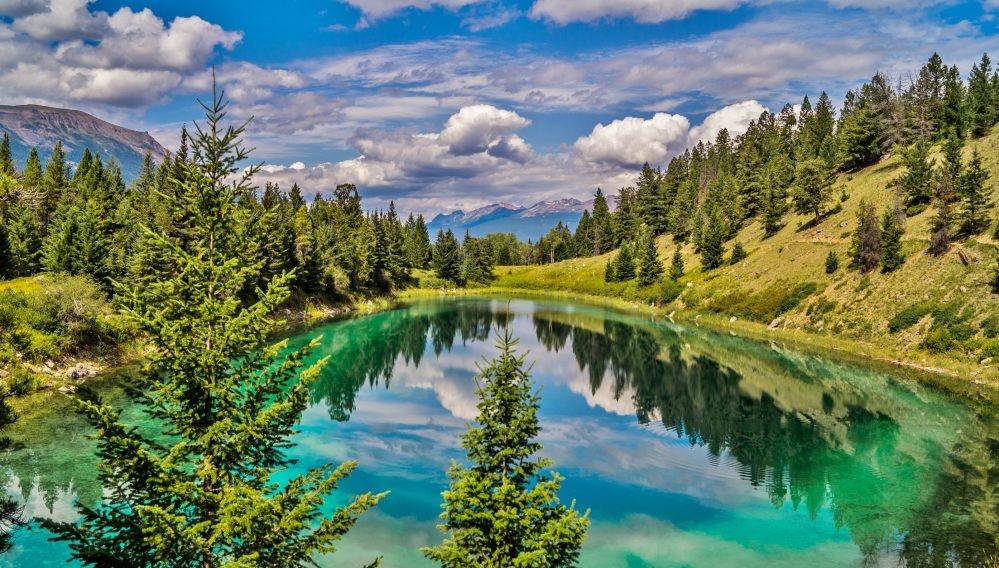 Nature Canada pleased that ecological integrity remains top priority for National Parks
