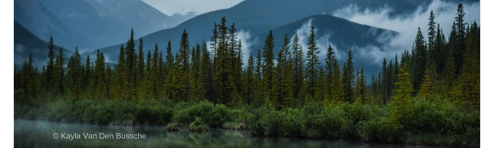 Climate Change is costing Fred, Martha and Canada's biodiversity